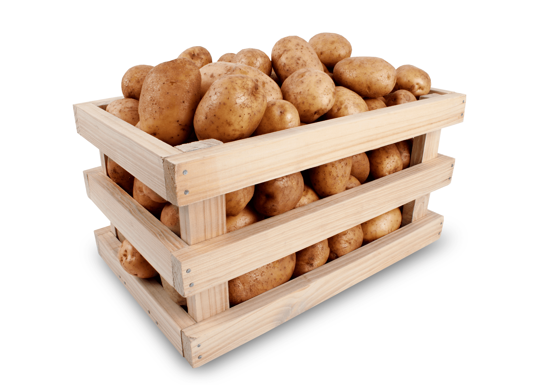 Suberizer Potato and Onion Storage