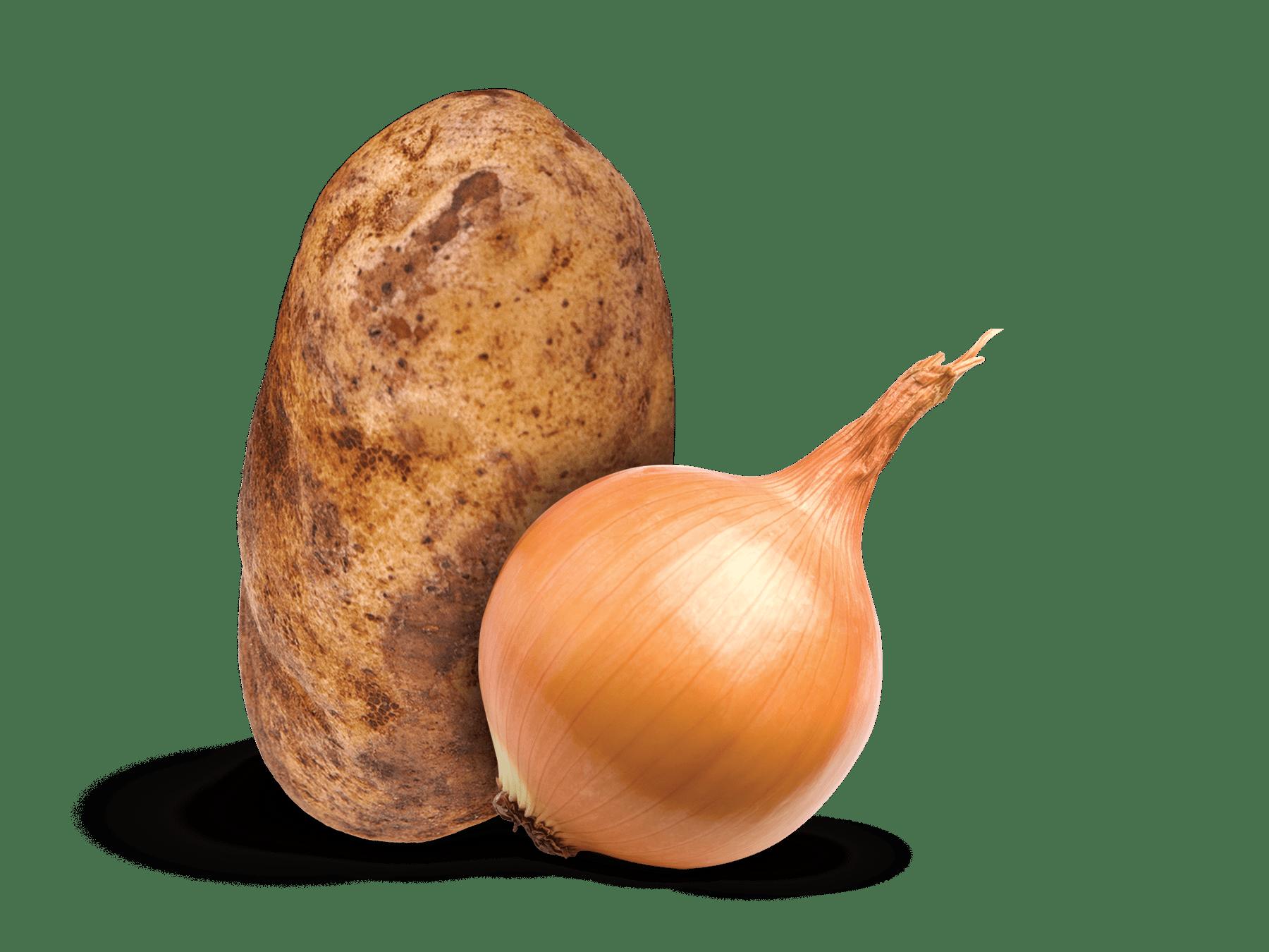 Suberizer Potato and Onion Storage